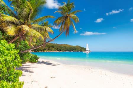 Le Piu Belle Isole Dei Caraibi Alpitour